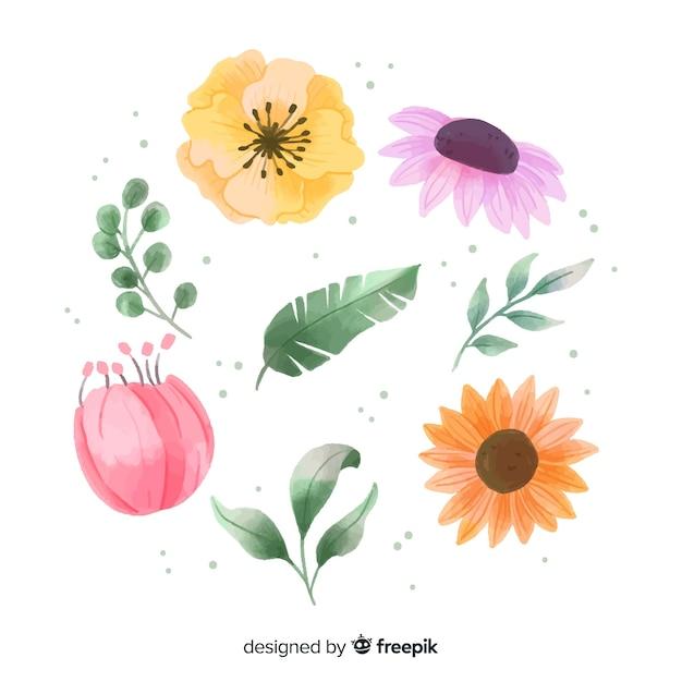 水彩花と葉 無料ベクター