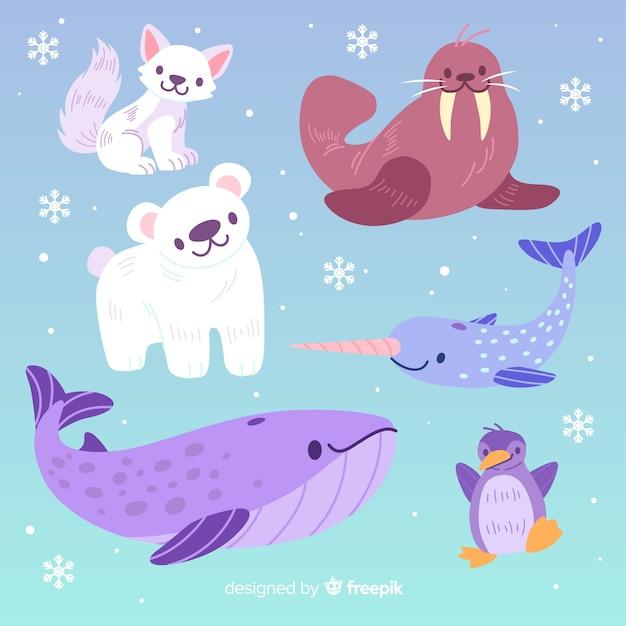 Коллекция милых животных с большим китом Бесплатные векторы