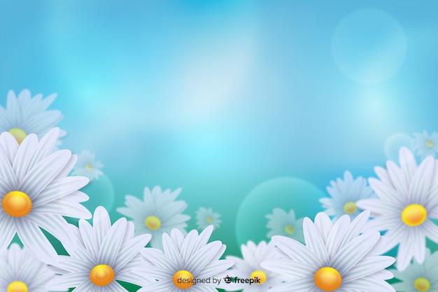 Белые цветы ромашки на синем светлом фоне Бесплатные векторы