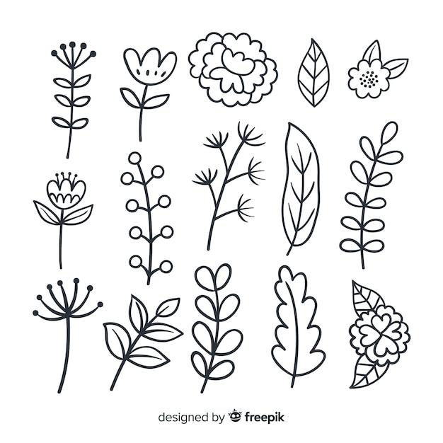 Ручной обращается коллекция растительного орнамента Бесплатные векторы