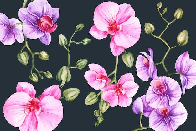 Цветочный ручная роспись реалистичный фон Бесплатные векторы
