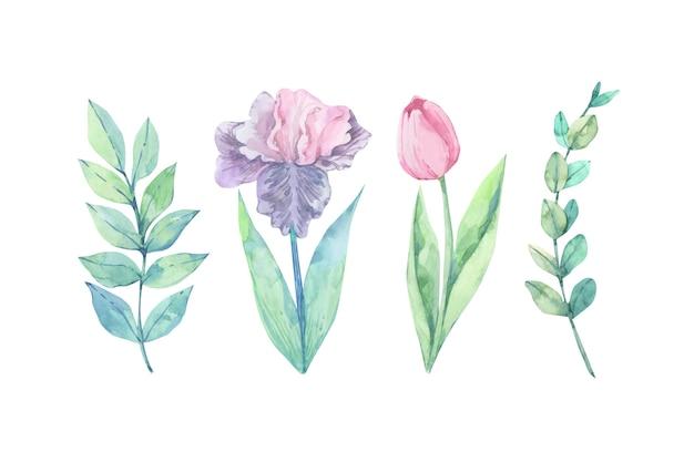 カラフルな水彩花 無料ベクター