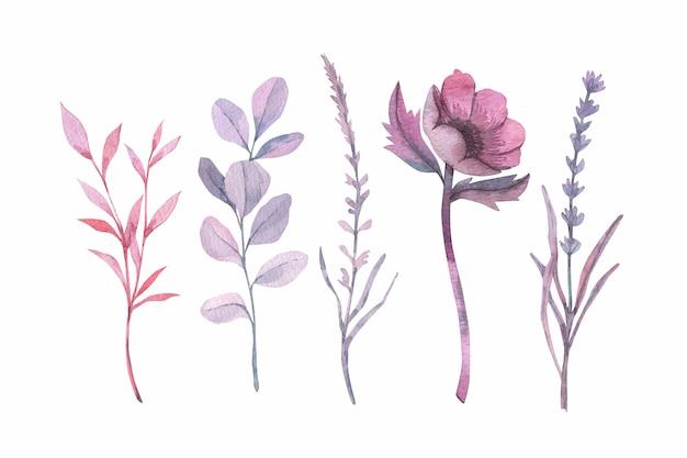 Красочные акварельные цветы Бесплатные векторы