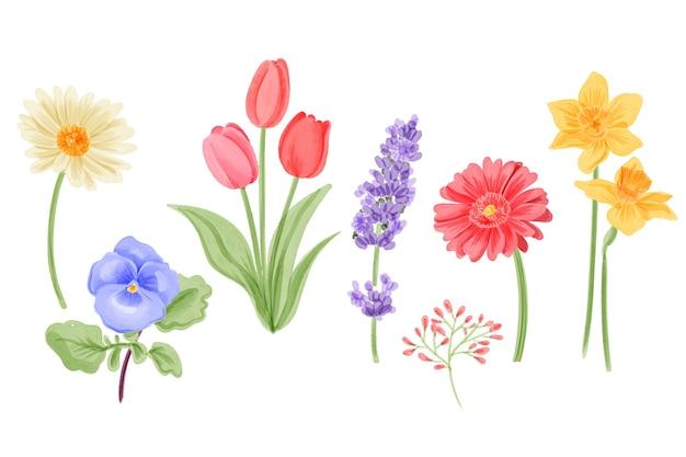 水彩画の春の花のコレクション 無料ベクター