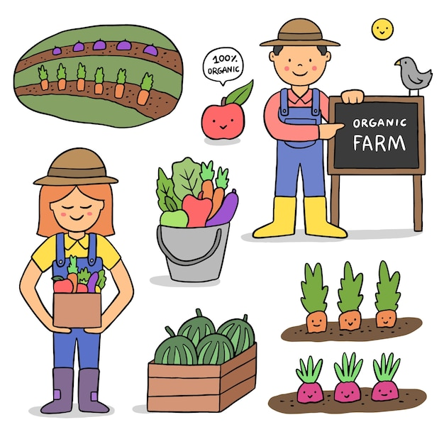 Органическое сельское хозяйство дизайн для иллюстрации Бесплатные векторы