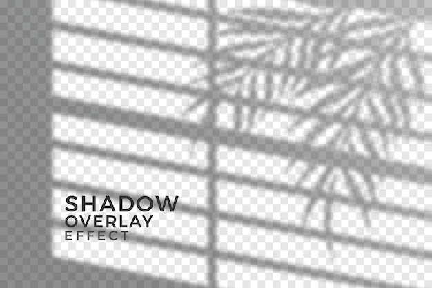 抽象的な透明な影の概念 無料ベクター