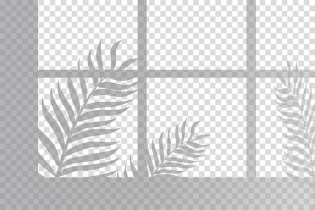 シダの葉の影のオーバーレイ効果 無料ベクター