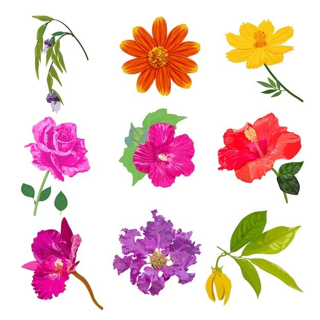 カラフルな現実的な花分離コレクションセット Premiumベクター