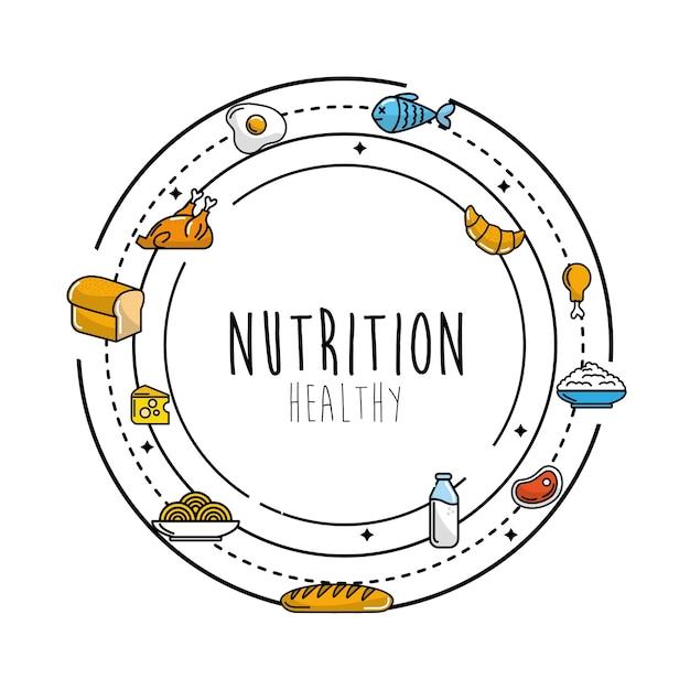 タンパク質食品を含む果物と野菜 Premiumベクター