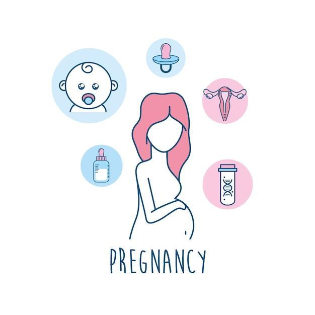 妊娠再建までの女性受精薬 Premiumベクター