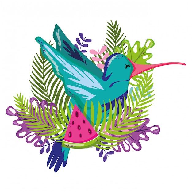 エキゾチックな鳥と夏 Premiumベクター