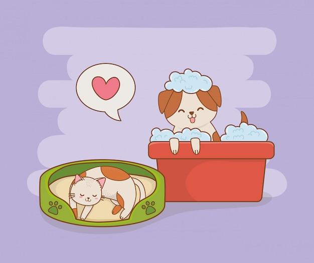 Милая маленькая собачка и котенок талисманы Premium векторы