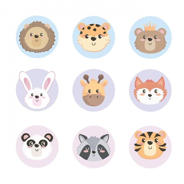 Набор головок милых диких животных Бесплатные векторы