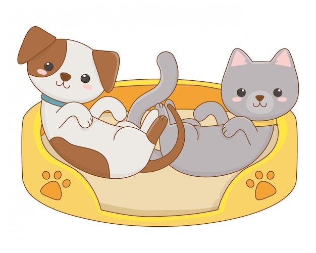 Изолированный дизайн мультяшный кот и собака Premium векторы
