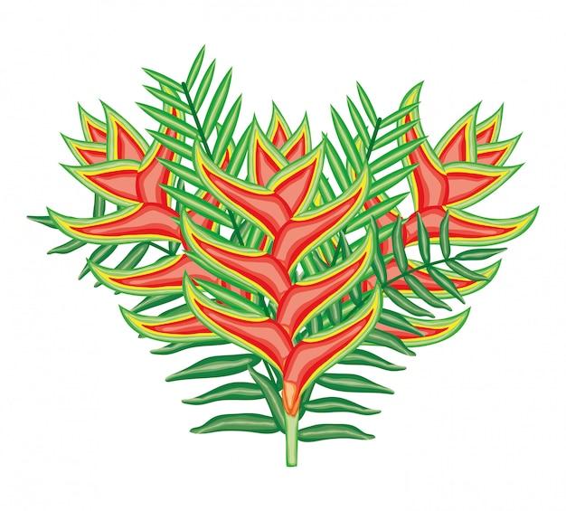 Тропические геликонии цветы и листья растений Premium векторы