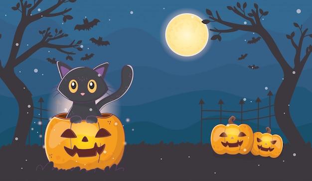 Милый кот с фонарями тыквы хэллоуин Premium векторы