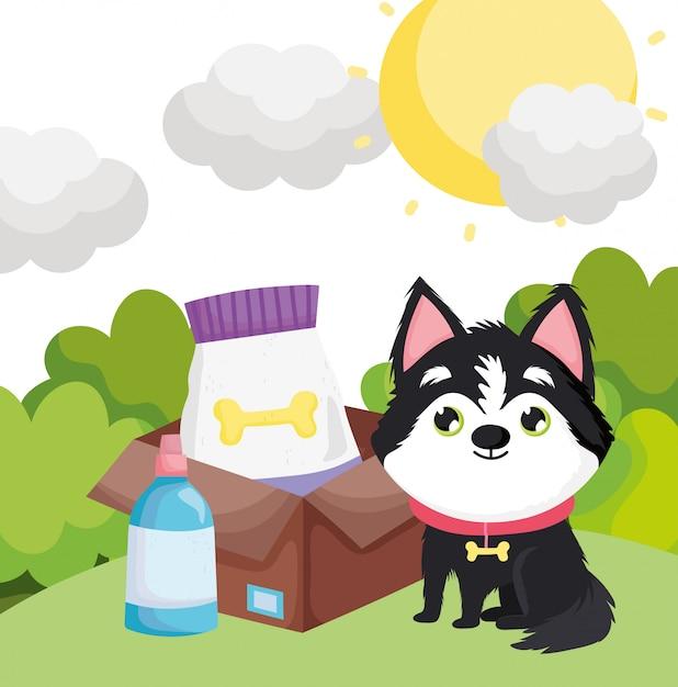 Собака сидит с едой в коробке на открытом воздухе домашних животных Premium векторы