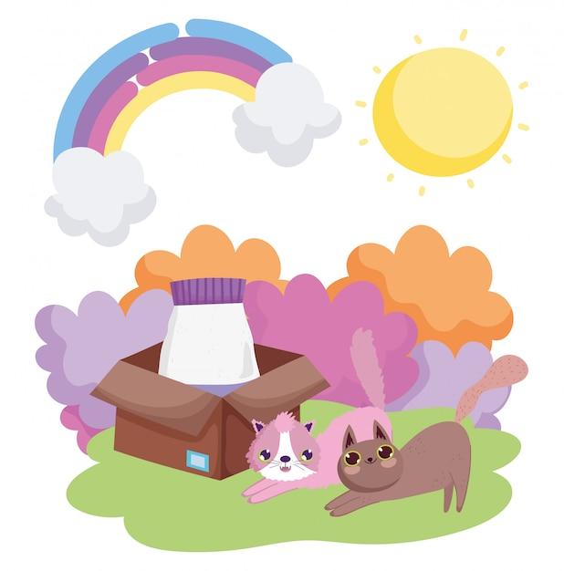 Кошки с едой в коробке травы солнца домашних животных Premium векторы