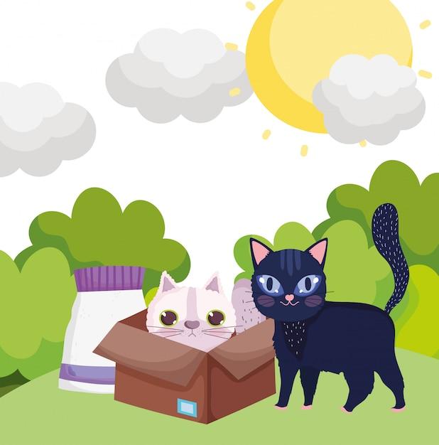 Черная кошка в траве и белая кошка в коробке с едой домашних животных Premium векторы