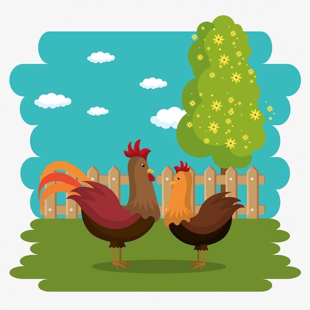 Петухи на ферме Бесплатные векторы