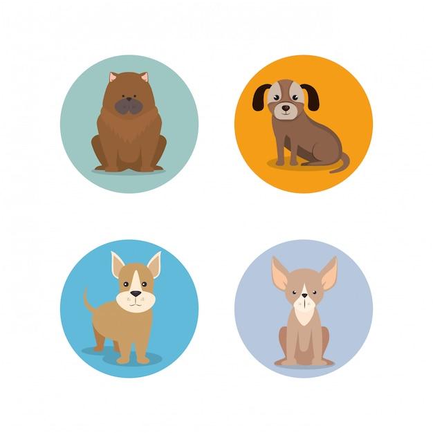 犬の品種のグループ 無料ベクター