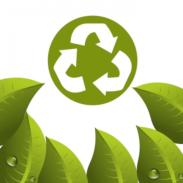 葉と葉のエコロジーグラフィック 無料ベクター