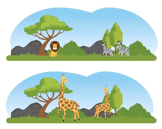 自然サファリ保護区に野生動物を設置する 無料ベクター