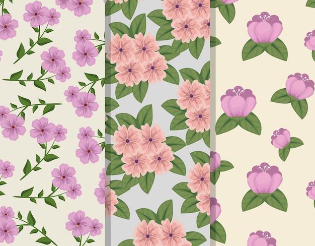 Набор цветочного стиля с узорами лепестков и листьев Бесплатные векторы