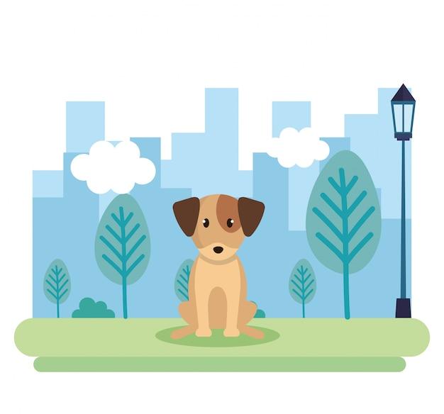 Милая собака в парке Бесплатные векторы