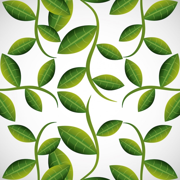 緑の葉または葉 無料ベクター