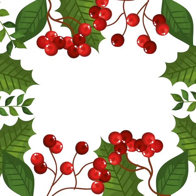 葉と枝の種子クリスマスアイコンのフレーム 無料ベクター