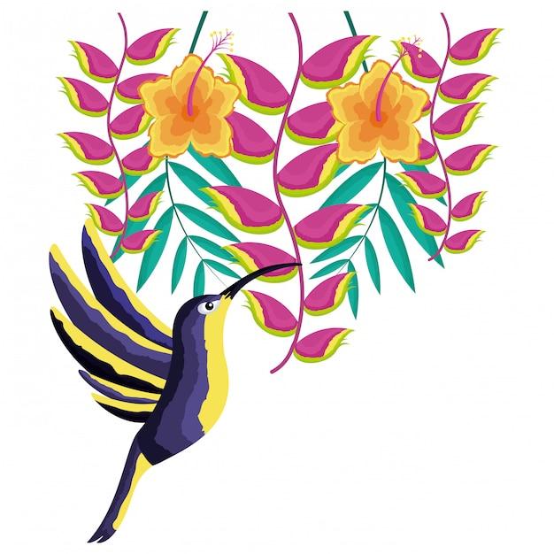 ハチドリ鳥の花、熱帯 Premiumベクター