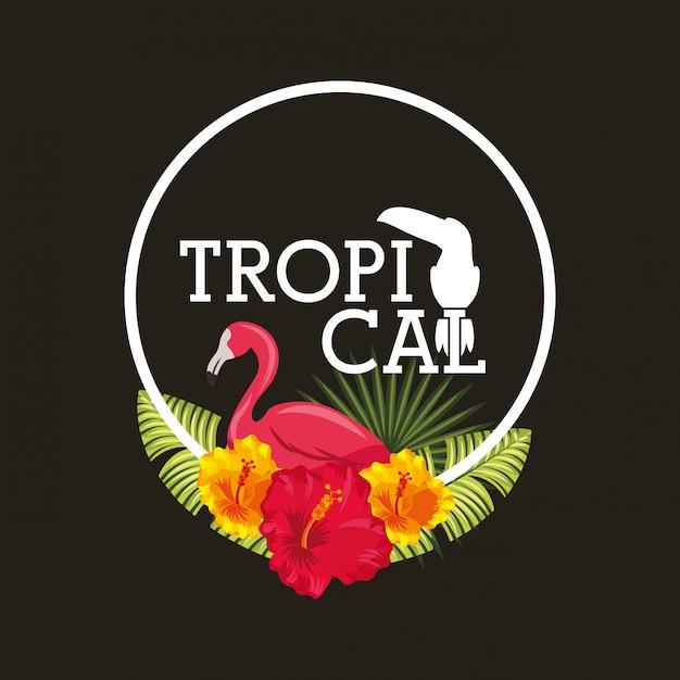 熱帯の花葉動物カード Premiumベクター