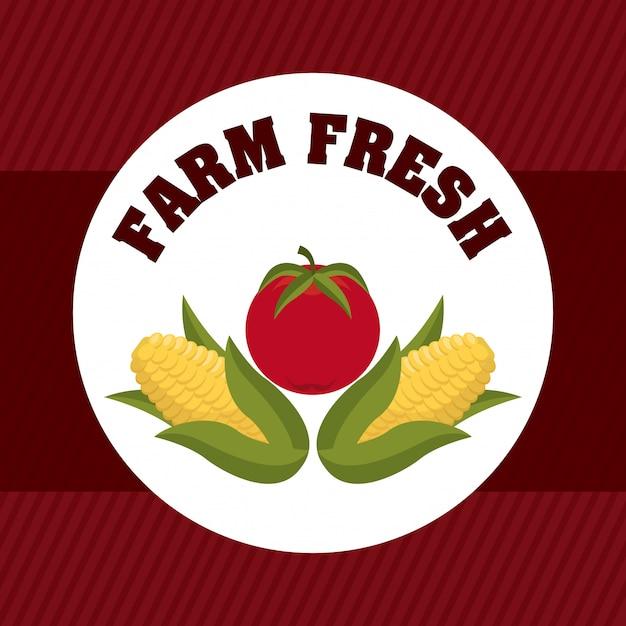 Графический дизайн фермы Бесплатные векторы