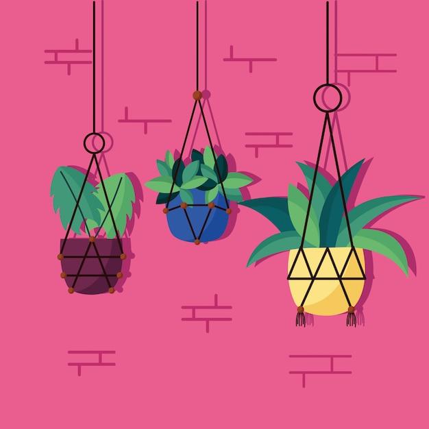 Декоративные комнатные растения дизайн интерьера Бесплатные векторы
