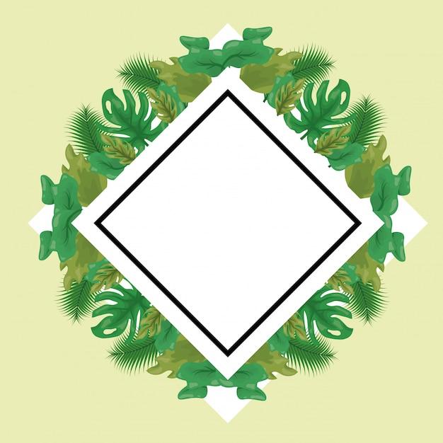 緑の熱帯の葉のラベル 無料ベクター