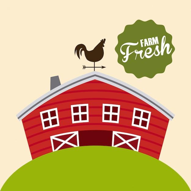 Ферма свежие иллюстрации Бесплатные векторы