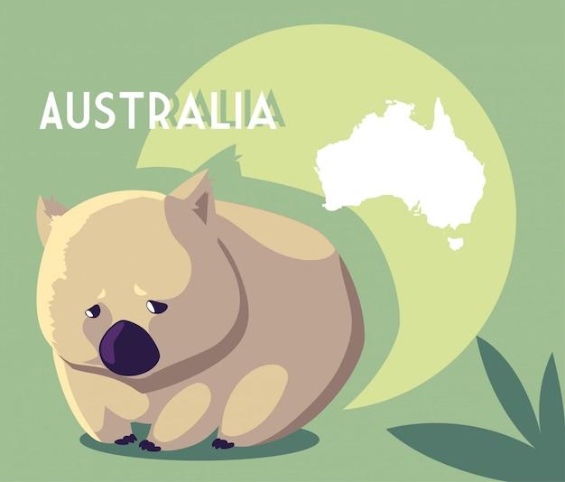 オーストラリアの地図とウォンバット Premiumベクター