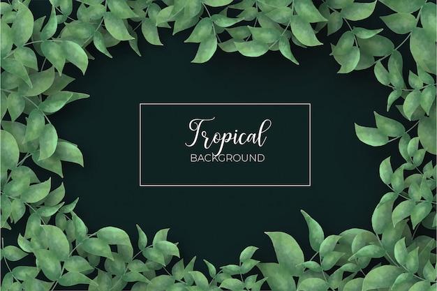 熱帯の葉のフレームの背景 無料ベクター