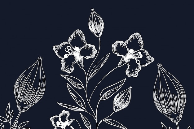 パターンの植物やハーブ絶縁アイコン Premiumベクター