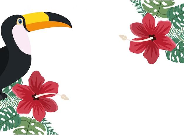 Рамка из тукана и летнего цветка Бесплатные векторы