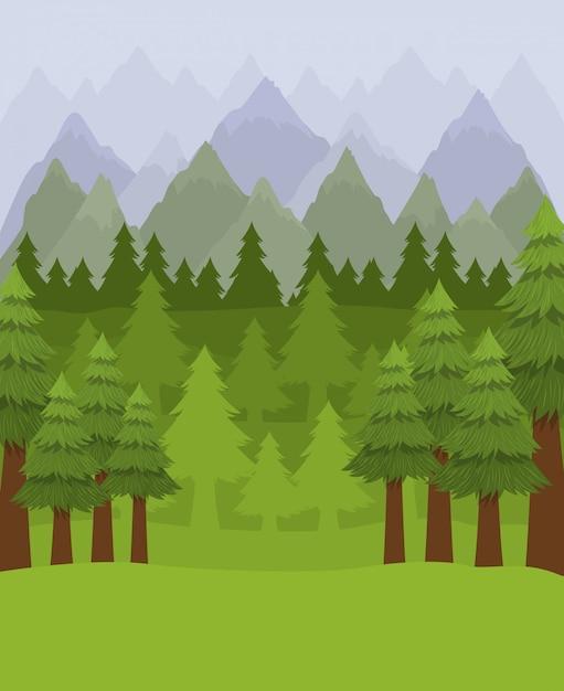 松の木の森 無料ベクター
