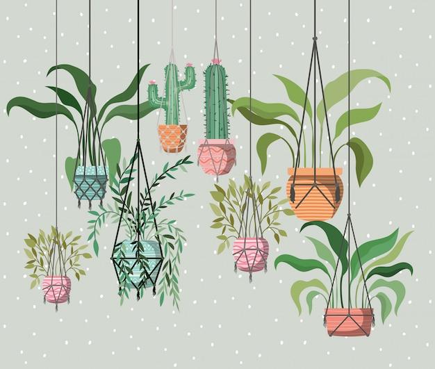 マクラメハンガーの観葉植物 Premiumベクター