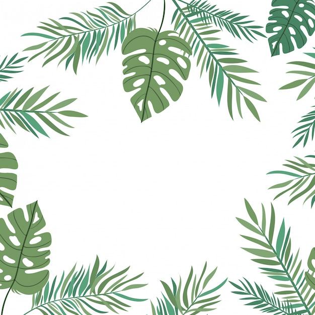 白い背景で夏の葉と枝 Premiumベクター
