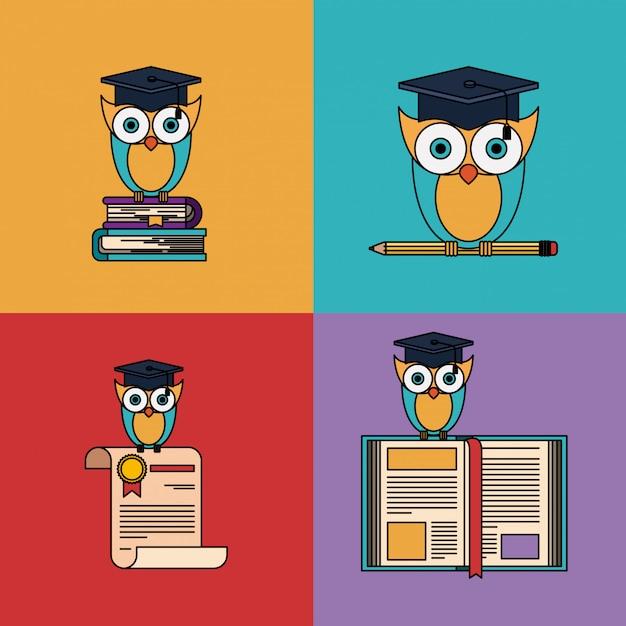 Разноцветный набор с совой со школьными и выпускными элементами Premium векторы