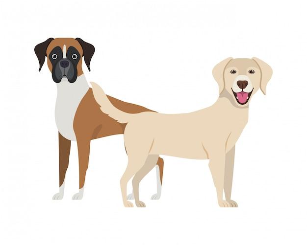 白地にキュートで愛らしい犬 Premiumベクター