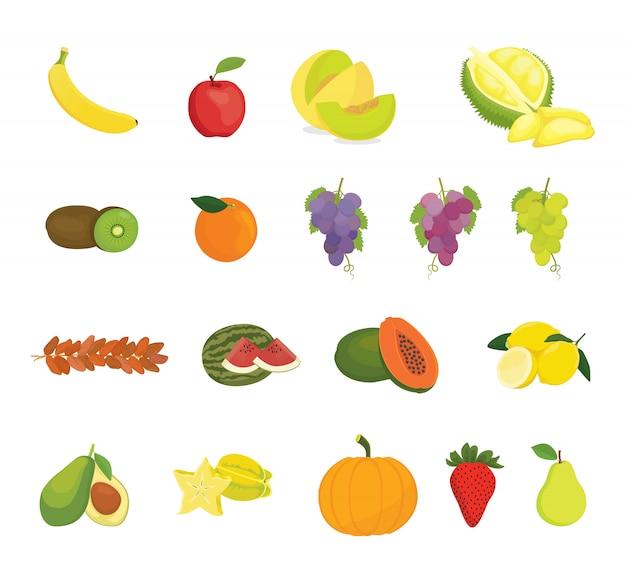Фруктовая коллекция с различными видами фруктов Premium векторы