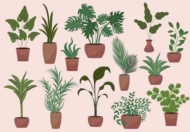 鉢植えのモダンなビンテージスタイルの大きなセット。要素の花、ヤシ、イチジク、モンステラ、アボカドのコレクション。図 Premiumベクター