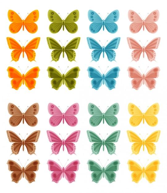 白い背景の上の美しいカラフルな蝶。図 Premiumベクター