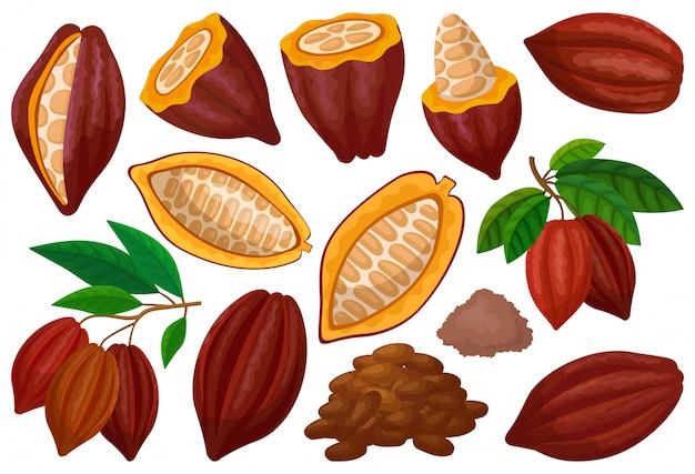カカオ豆分離漫画セットアイコン。白い背景の上の図のチョコレートフルーツ。漫画セットアイコンカカオ豆。 Premiumベクター
